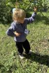 Куртка Айган (серый)